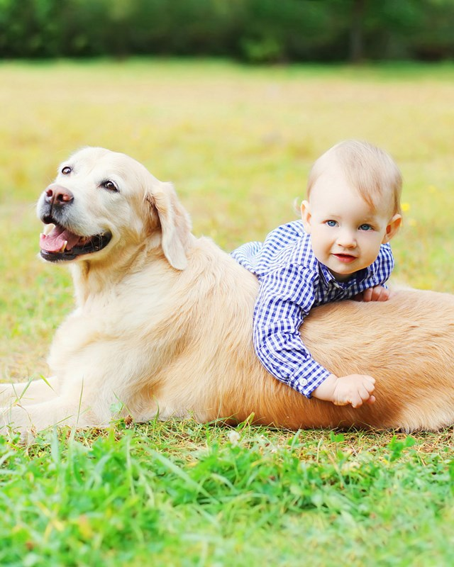 young boy and dog playing outside in the grass